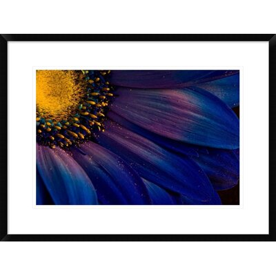 'Blue Rays' by Thorsteinn H. Ingibergsson Framed Photographic Print DPF-462134-22-266