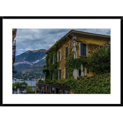 'Vines' by Sierra Bononi Framed Photographic Print DPF-461683-30-266