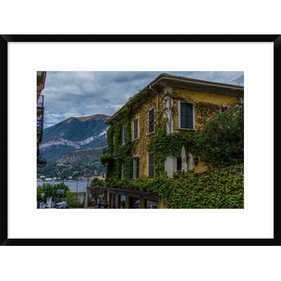 'Vines' by Sierra Bononi Framed Photographic Print DPF-461683-22-266