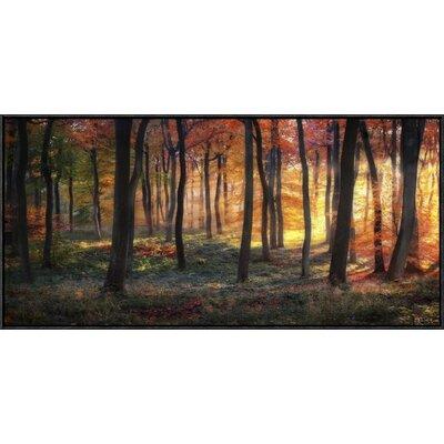 'Autumn Woodland Sunrise' by Photokes Framed Photographic Print GCF-466948-40-175