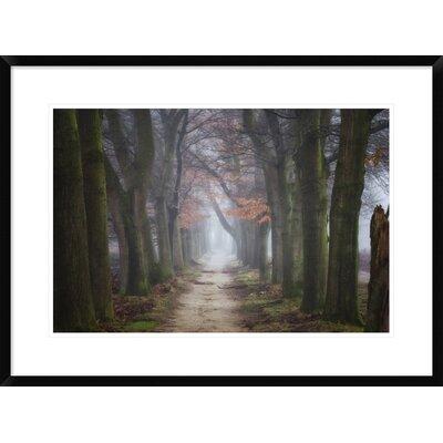 "'Endings & Beginnings' by Ellen Borggreve Framed Photographic Print Size: 22"" H x 30"" W x 1.5"" D DPF-466818-1624-266"