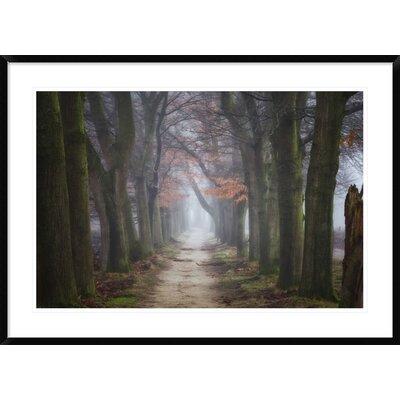 "'Endings & Beginnings' by Ellen Borggreve Framed Photographic Print Size: 30"" H x 42"" W x 1.5"" D DPF-466818-2436-266"