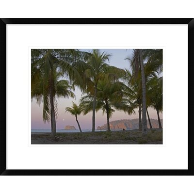 'Moon Setting, Playa Carillo, Guanacaste, Costa Rica' Framed Photographic Print DPF-396335-1216-266