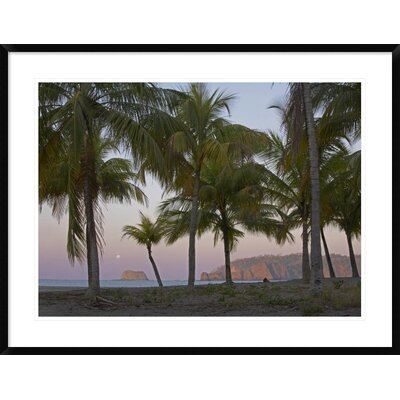'Moon Setting, Playa Carillo, Guanacaste, Costa Rica' Framed Photographic Print DPF-396335-2432-266