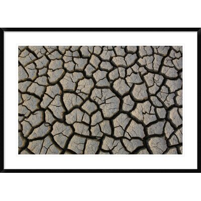 "'Cracked Mud on the Salt Flats of the Little Rann of Kutch, Gujarat, India' Framed Photographic Print Size: 30"" H x 42"" W x 1.5"" D DPF-397934-2436-266"