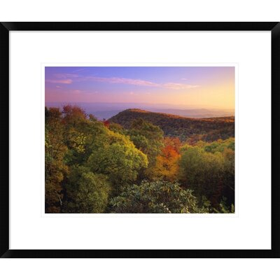 Blue Ridge Mountains with Deciduous Forests in Autumn, North Carolina by Tim Fitzharris Framed Photographic Print DPF-396763-1216-266