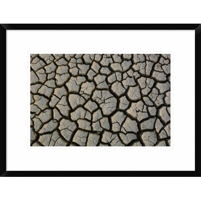 "'Cracked Mud on the Salt Flats of the Little Rann of Kutch, Gujarat, India' Framed Photographic Print Size: 18"" H x 24"" W x 1.5"" D DPF-397934-1218-266"