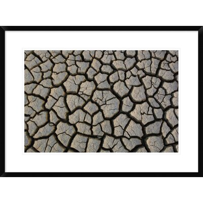 "'Cracked Mud on the Salt Flats of the Little Rann of Kutch, Gujarat, India' Framed Photographic Print Size: 22"" H x 30"" W x 1.5"" D DPF-397934-1624-266"