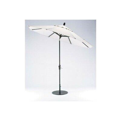 9 Value Market Umbrella