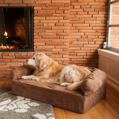 Luxury Dog Memory Foam Sofa Color: Dark Chocolate, Size: Large (40 L x 30 W)
