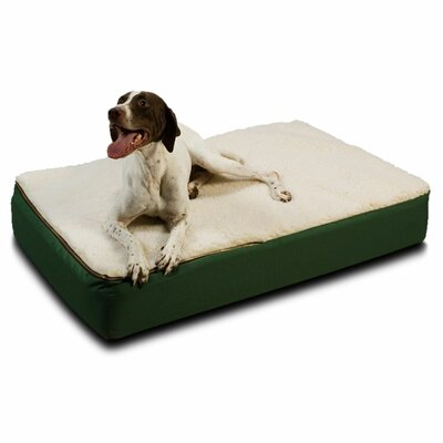 Super Orthopedic Lounge Dog Pillow Size: Medium (36 L x 28 W), Color: Green with Cream Sherpa Top