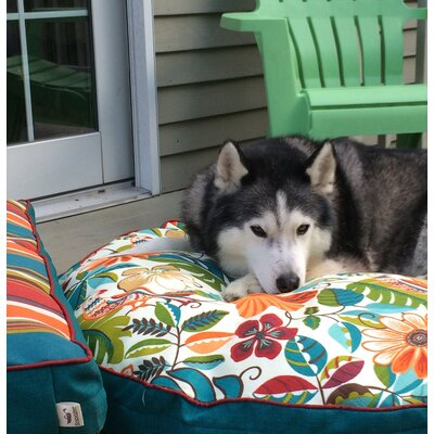 Pool and Patio Jungle Dog Bed Size: Small (24 L x 24 W)