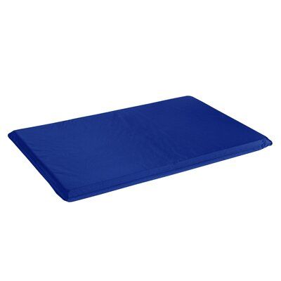 All Weather Crate Dog Mat Size: X-Small (24 L x 18 W), Color: Marine