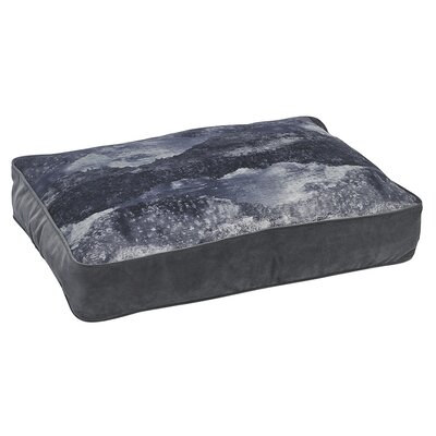 SuperLoft Rect Nightfall Pillow Size: 52 W x 35 D x 6 H