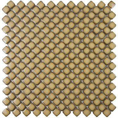 Gem 0.71 x 0.71 Porcelain Mosaic Tile in Glossy Caf�