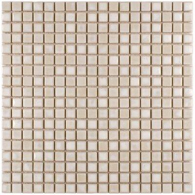 Arcadia 0.56 x 0.56 Porcelain Mosaic Tile in Glacier