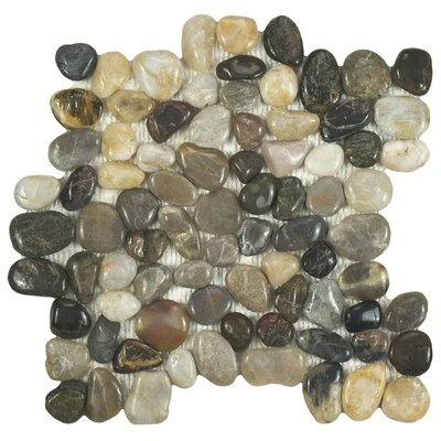 Brook 11.75 x 11.75 Natural Stone Pebble Tile in Black/Beige
