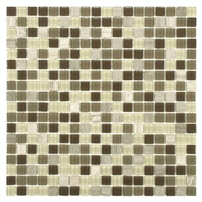 Ambit 1 x 1 Glass/Natural Stone Mosaic Tile in Glossy Aegis