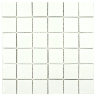Dryas 2 x 2 Quad Porcelain Mosaic Tile in White