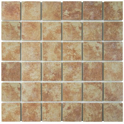 Elbert 2 x 2 Porcelain Mosaic Tile in Matte Brown/Beige