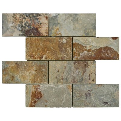 Peak 2.88 x 5.88 Natural Stone Mosaic Tile in Brown/Gray
