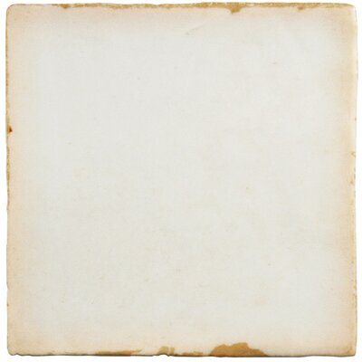 Arquivo 4.88 x 4.88 Ceramic Field Tile