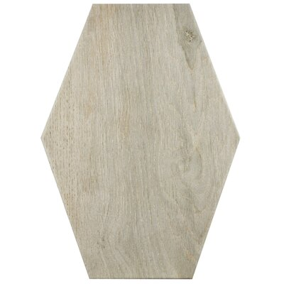 Egurra 8.38 x 11.75 Porcelain Wood Look Tile in Beige