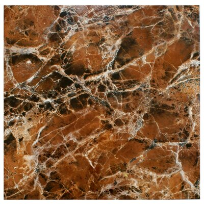 Elypse 17.75 x 17.75 Ceramic Field Tile in Marbled Marron