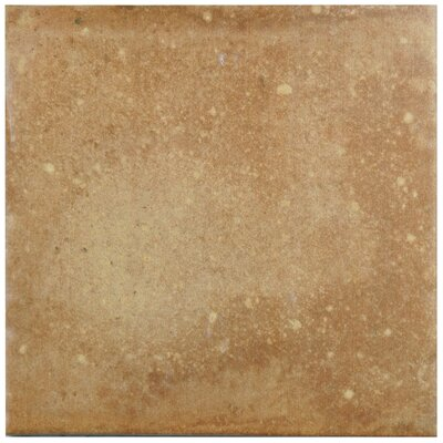 Lincoln 8.75 x 8.75 Porcelain Field Tile in Light Tawny