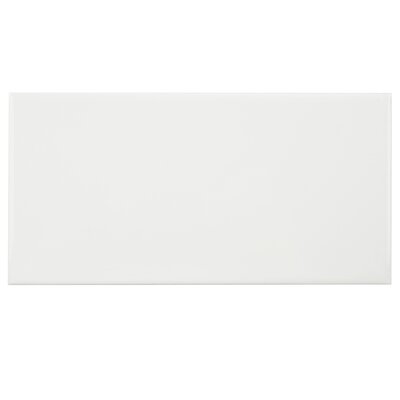 Prospect 3 x 6 Ceramic Subway Tile in Glazed White