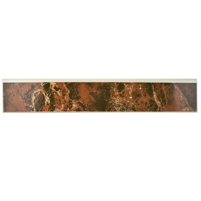 Elypse 17.75 x 3.25 Bullnose Tile Trim in Marron