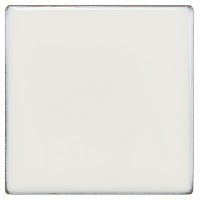 Essentia 4 x 4 Porcelain Field Tile in Ivory White