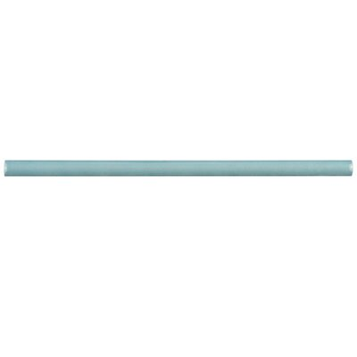 Tivoli 12 x 0.5 Ceramic Bullnose Tile Trim in Aqua