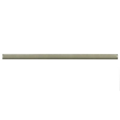 Tivoli 12 x 0.5 Ceramic Bullnose Tile Trim in Gray
