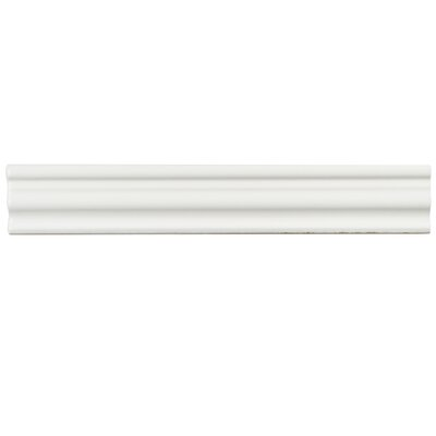Tivoli 12 x 2 Ceramic Counter Rail Tile Trim in White