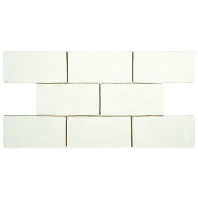 Tivoli 3 x 6 Ceramic Subway Tile in Bianco