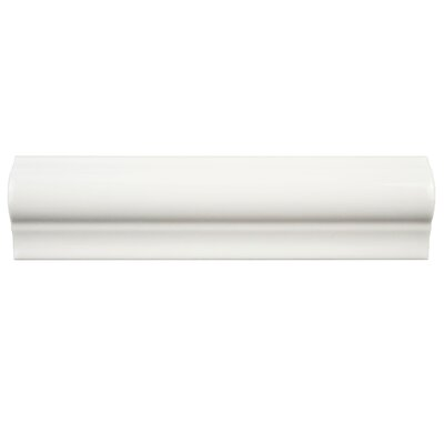 Guadeloupe 2 x 8 Ceramic Moldura Trim Wall Chair Rail Tile in Blanco