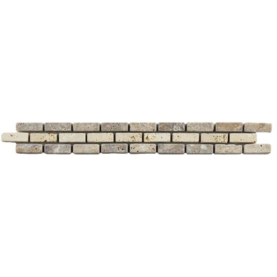 Boutin 12 x 1.25 Travertine Trim Listello/Border Tile in Noce Chiaro