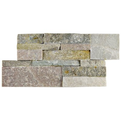 Piedro 7 x 13.5 Natural Stone Splitface Tile in Tan/Gray