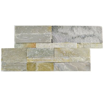 Piedro 7 x 13.5 Natural Stone Splitface Tile in Gray/Beige