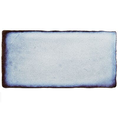 Antiqua 3 x 6 Ceramic Subway Tile in Special Via Lactea