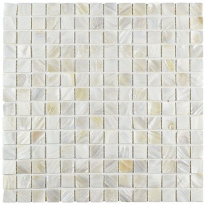 Shore 0.75 x 0.75 Square Seashell Mosaic Tile in White