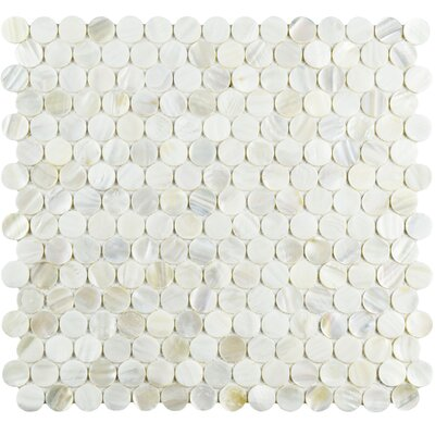 Shore 0.75 x 0.75 Seashell Mosaic Tile in White