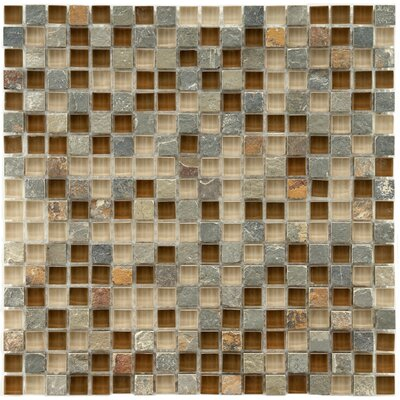 Sierra 0.58 x 0.58 Glass and Natural Stone Mosaic Tile in Brown