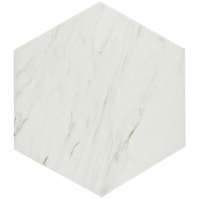 Marbre Carrara 8.63 x 9.88 Porcelain Mosaic Tile in White