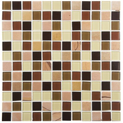 Chroma 0.88 x 0.88 Glass and Natural Stone Mosaic Tile in Brown/Tan