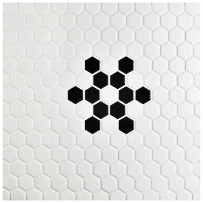 Retro Hexagon 0.875 x 0.875 Porcelain Mosaic Tile in Glazed Black/White