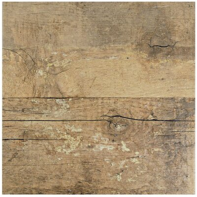 Pacific 11.88 x 11.88 Porcelain Wood Look Tile in Brown/Gray