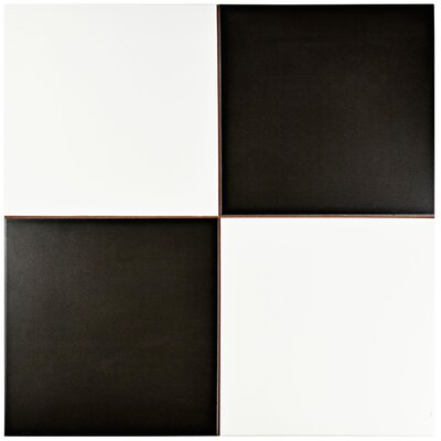 Verifica 17.63 x 17.63 Ceramic Field Tile in Black/White