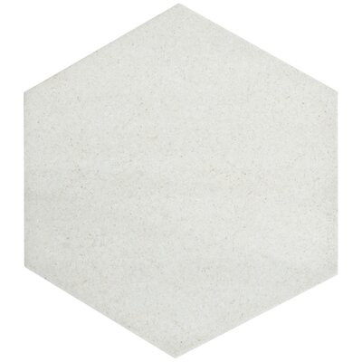 Annata 8.63 x 9.88 Porcelain Field Tile in Blanco